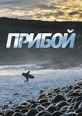 Search netflix Surf Siberia